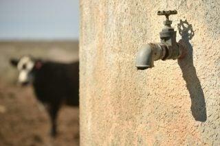 Klipheuwel in Limpopo still has no water to stave off virus threat – The Citizen